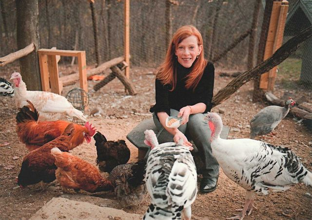 susan orlean tends to her chickens and turkeys