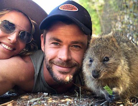 Mammal, Groundhog, Groundhog day, Gopher, wombat, Adaptation, Terrestrial animal, Selfie, Photography, Wombat,