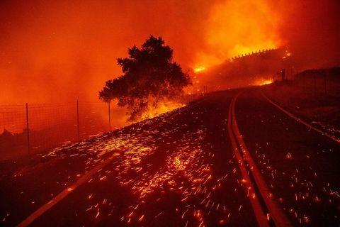 の 原因 火事 山