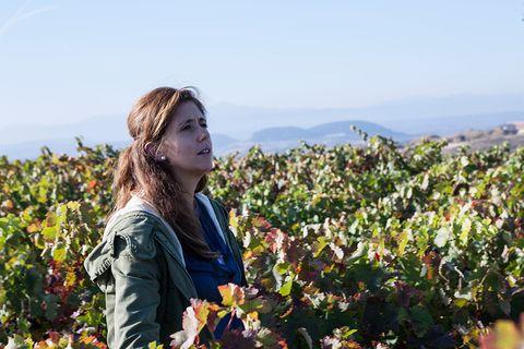 Mujeres enólogas gerentes de las bodegas del grupo Hispanobodegas