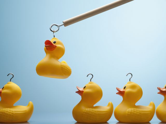 employability tips, cv, interview advice