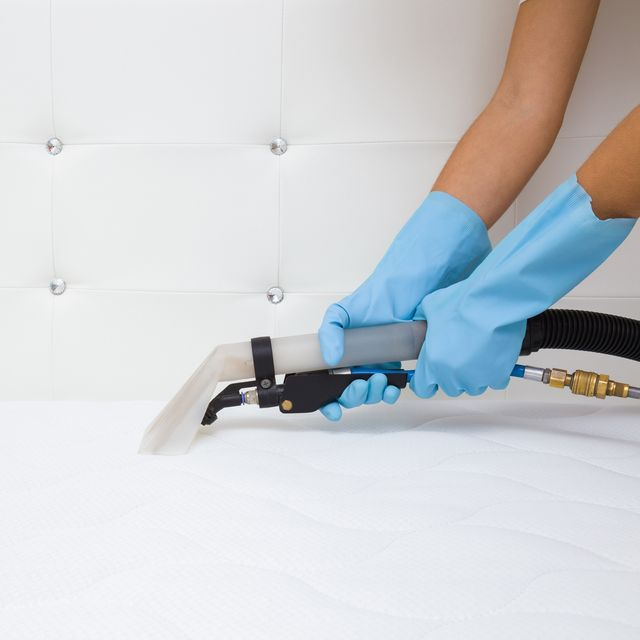 employee hands in blue protective gloves cleaning new modern white mattress with professionally extraction method regular cleanup commercial cleaning company closeup side view