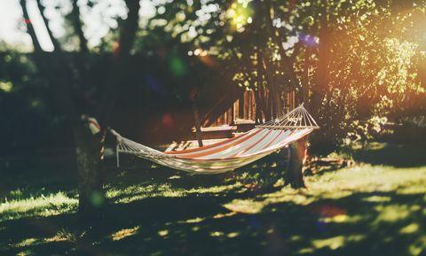 Empty hammock in the garden between trees