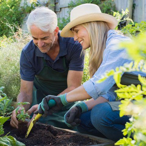 Gardener, Garden, Farmworker, Gardening, Plant, Community, Leaf vegetable, Local food, Soil, Flower,