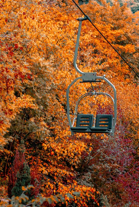 empty stair lift in the middle of a forest in autumn