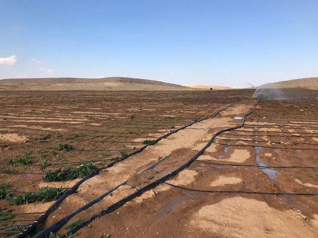 サスティナブル,sdgs,ヨルダン,太陽光発電,水資源開発事業,enbio holdings,