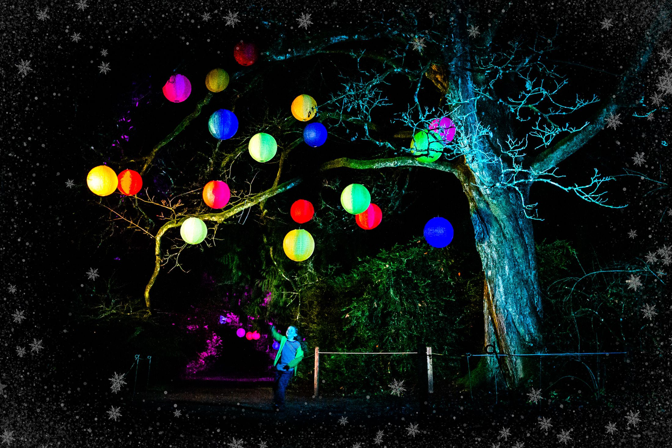 Enchanted Christmas Village 2020 Enchanted Christmas Returns to Westonbirt Arboretum For 2019