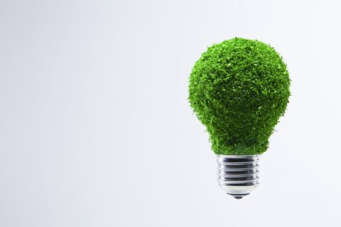 Energy saving light bulb covered in green grass