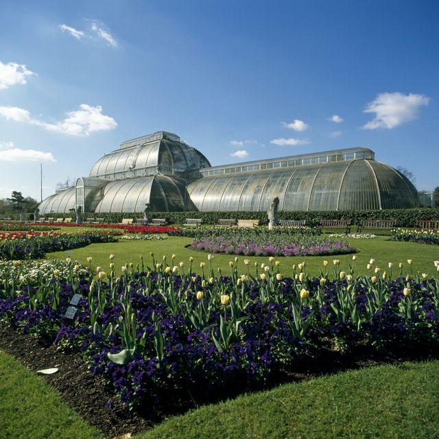 kew gardens olympic trials