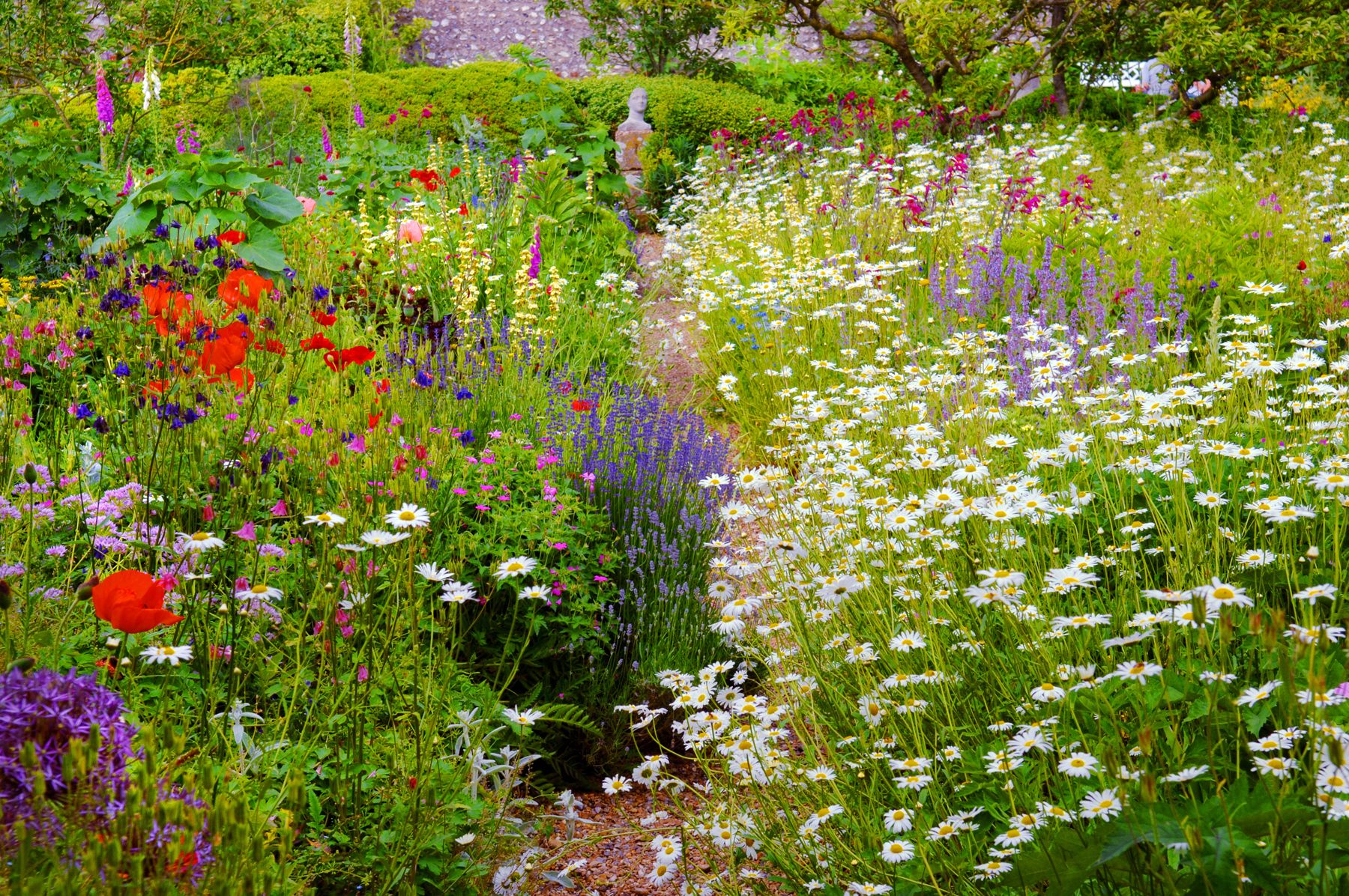 10 English Garden Design Ideas