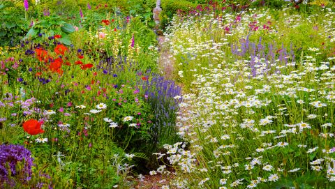 10 English Garden Design Ideas - How to Make an English ... on design designs, raised garden, rock gardening designs, aquaponics designs, tomato designs, hydroponics designs, vegetable gardening designs, permaculture designs, vertical gardening designs, plant designs, shrubs designs, container gardening designs, xeriscaping designs, outdoor gardening designs, trees designs, square foot gardening designs, window box gardening designs, raised planting beds, irrigation designs, raised vegetable beds,