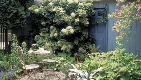 10 English Garden Design Ideas How To Make An English