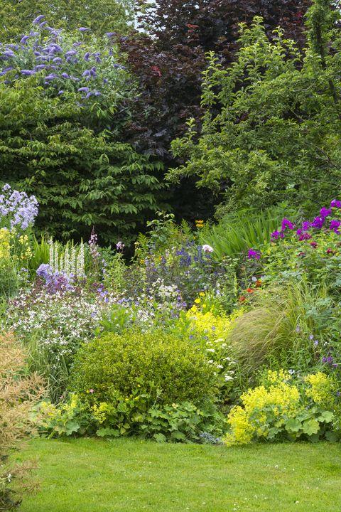 variety english gardens