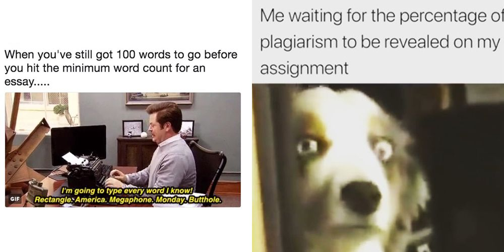 12 memes you'll relate to if you're an English student