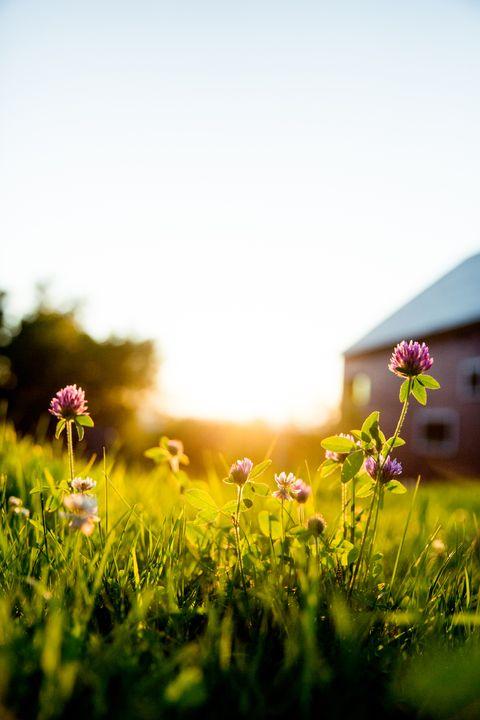 Another Beautiful Sunrise Morning Prayer