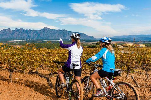 rutas en bicicleta entre viñedos, una de las propuestas de enoturismo de los viñedos de la do penedès