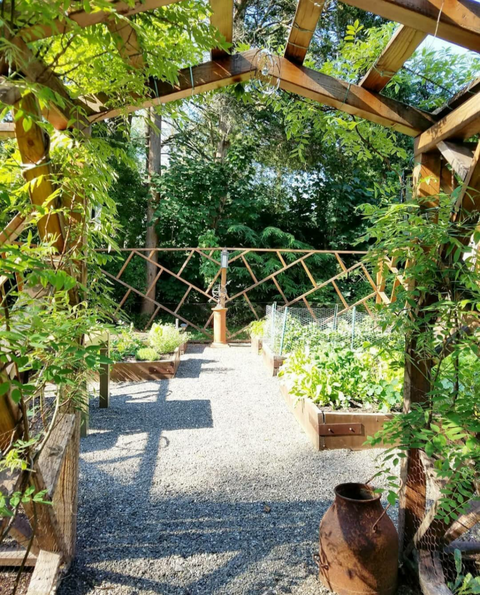 garden with gravel
