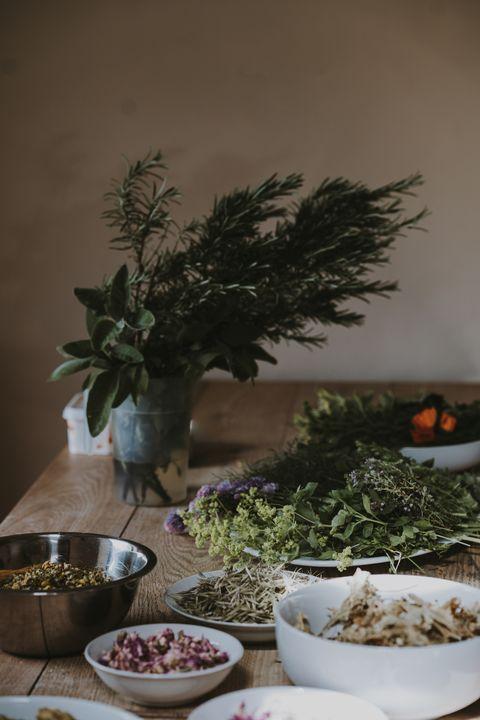 Meal, Food, Dish, Houseplant, Cuisine, Plant, Ingredient, Tree, Herb, Vegetarian food,