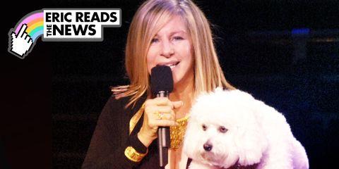 Dog, Canidae, Singer, Nose, Bichon, Singing, Dog breed, Companion dog, Non-Sporting Group, Performance,