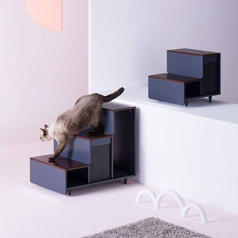 Escalones para mascotas