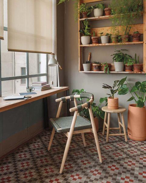 escritorio de madera decorado con plantas