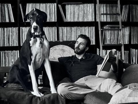 Dog, Canidae, Sitting, Dog breed, Guard dog, Companion dog, Great dane, Carnivore, Reading, Furniture,