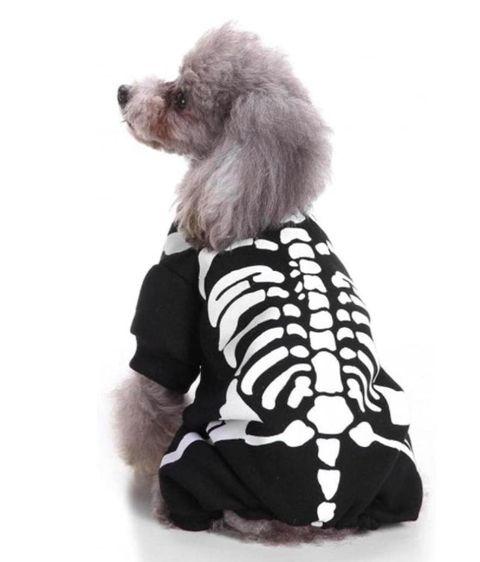 disfraces halloween perros