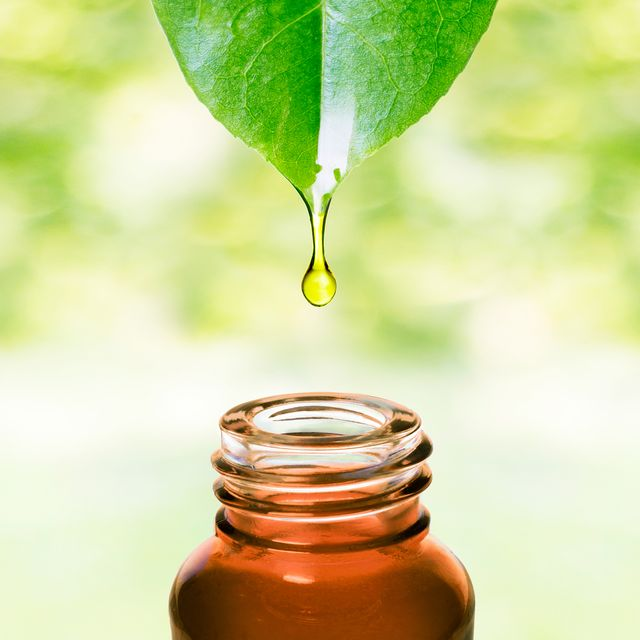 essential oil dropping from leaf aromatherapy