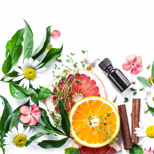various herbs and flowers on white background