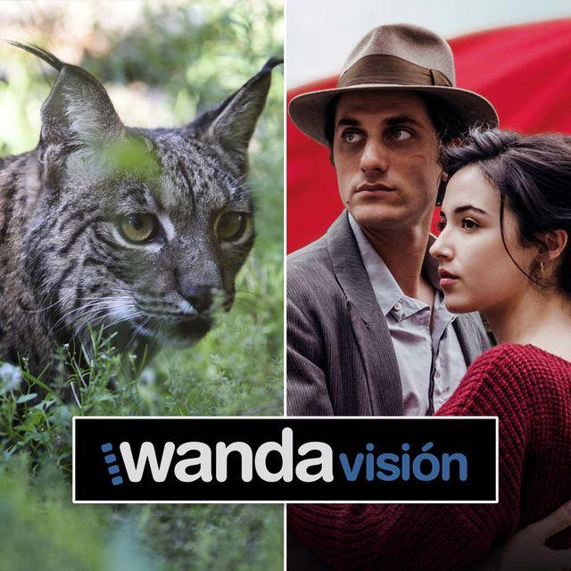 estrenos peliculas 2020 wanda vision