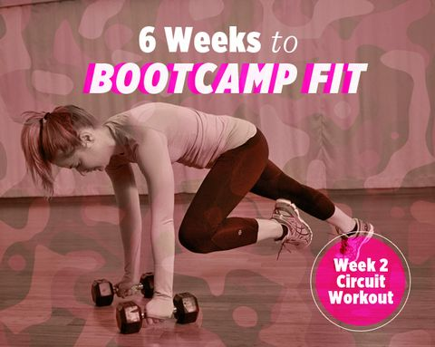 6 Weeks to Bootcamp Fit: Week 2 Strength Circuit Workout