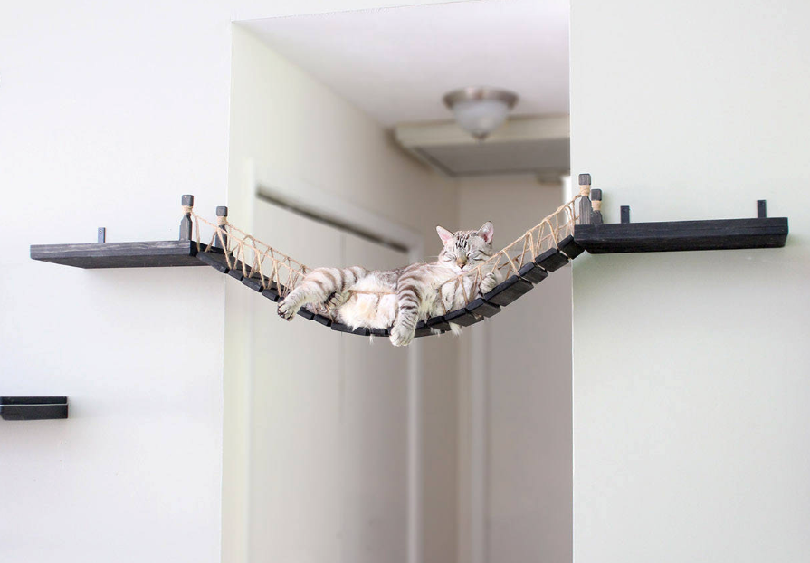 You Have To Buy This Indiana Jones-Inspired Cat Bridge On Etsy for Your Furbaby