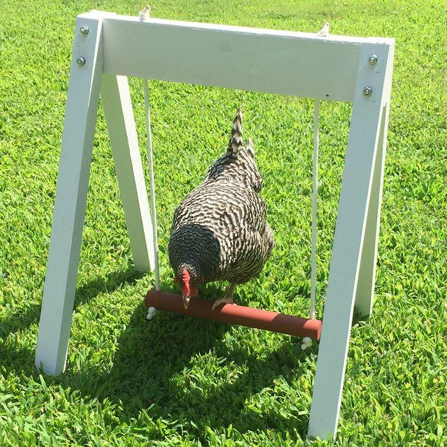 etsy chicken swing