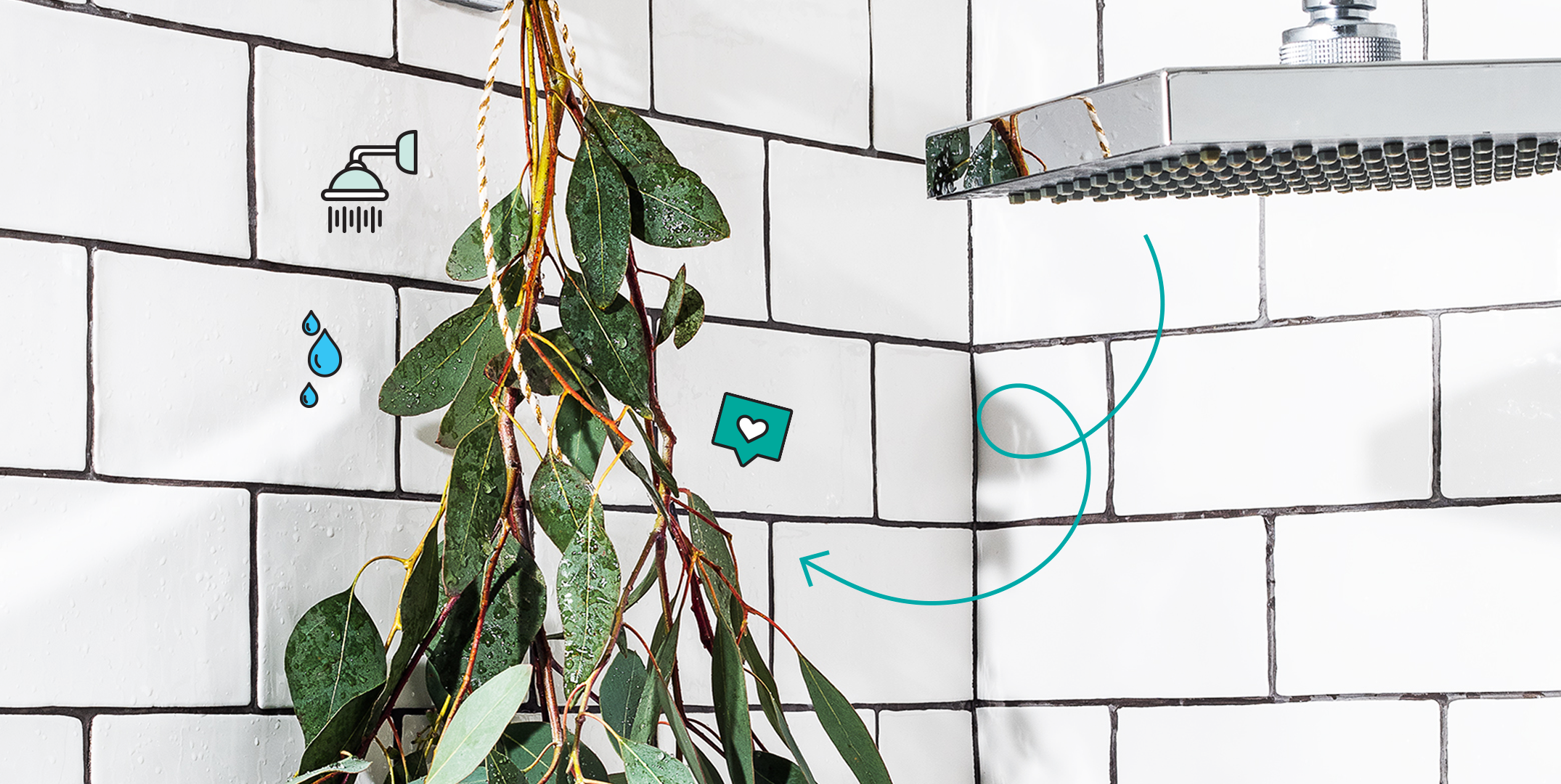 The Eucalyptus in Shower Trend Is Actually Good for You (In Case You Were Curious)