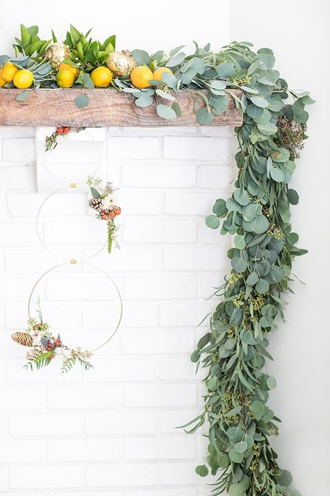 Plant, Ivy, Wall, Flower, Botany, Floral design, Flowerpot, Twig, Herb, Wreath,