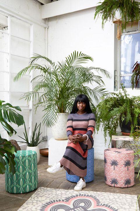 Flowerpot, Houseplant, Botany, Tree, Plant, Palm tree, Arecales, Room, Furniture, Vacation,