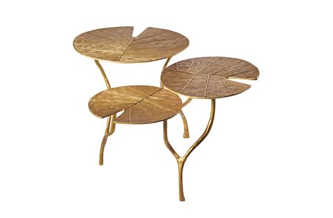 Leaf, Table, Branch, Plant, Tree, Flower, Plant stem, Furniture, Twig, Anthurium,