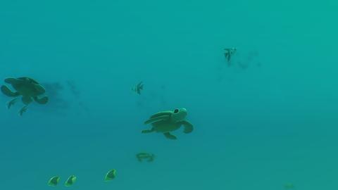 Sea turtle, Underwater, Turtle, Marine biology, Green sea turtle, Green, Organism, Turquoise, Loggerhead sea turtle, Aqua,
