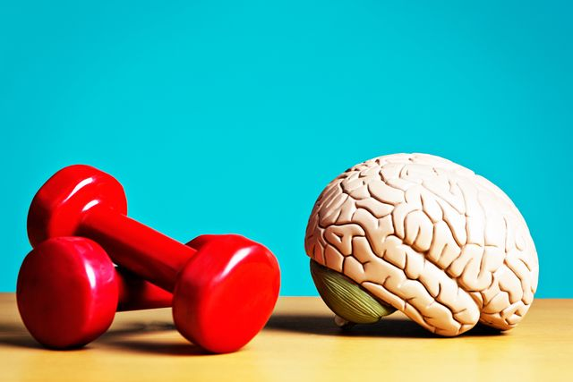 exercise keeps body and mind fit model brain with barbells