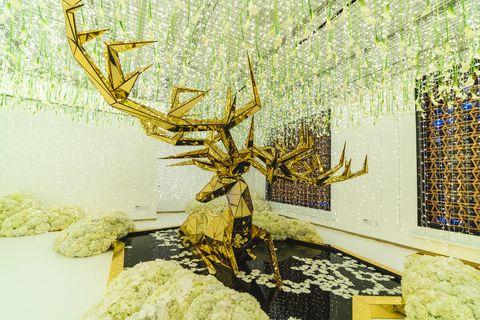 Tree, Yellow, Branch, Wall, Twig, Plant, Organism, Still life, Art,