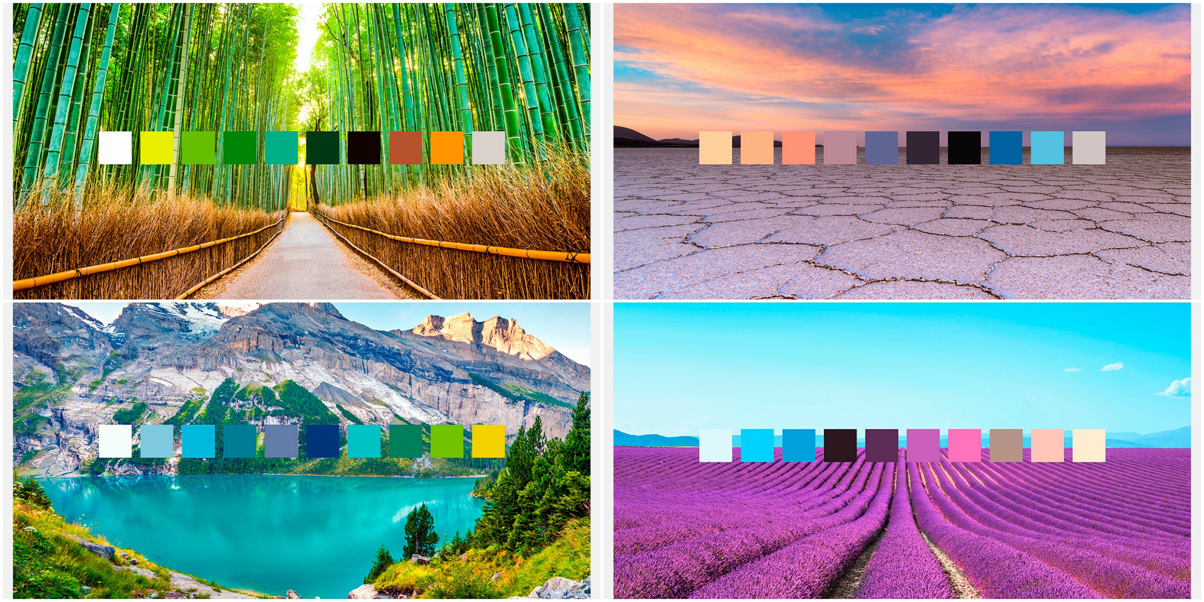Expedia - colour palettes across the world