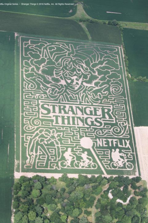 25 Best Corn Mazes Near Me The Best Haunted And Family