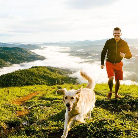 愛犬と一緒,健康,トレーニング,筋トレ,ワークアウト,散歩,ジョギング,