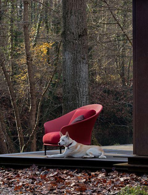 La collezioni di arredi per esterno Liz di Ludovica e Roberto Palomba per Expormin