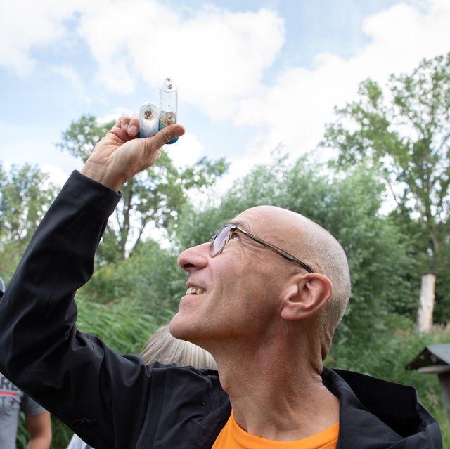 vondelpark amsterdam expeditie dieren nieuwe diersoort ontdekt kever insect beatles