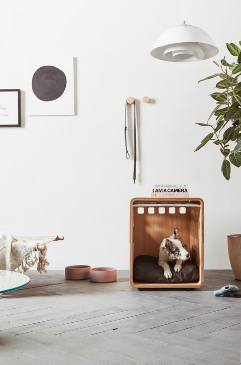a room with adog inside an open wooden pet crate that doubles as a side table