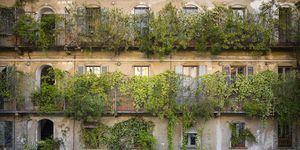 Facade from a courtyard
