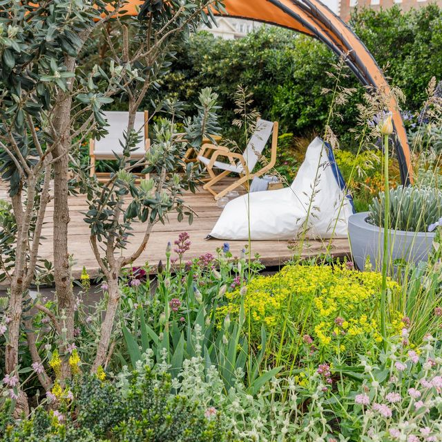facebook beyond the screen designed by joe perkins sponsored by facebook rhs chelsea flower show 2019 stand no 291