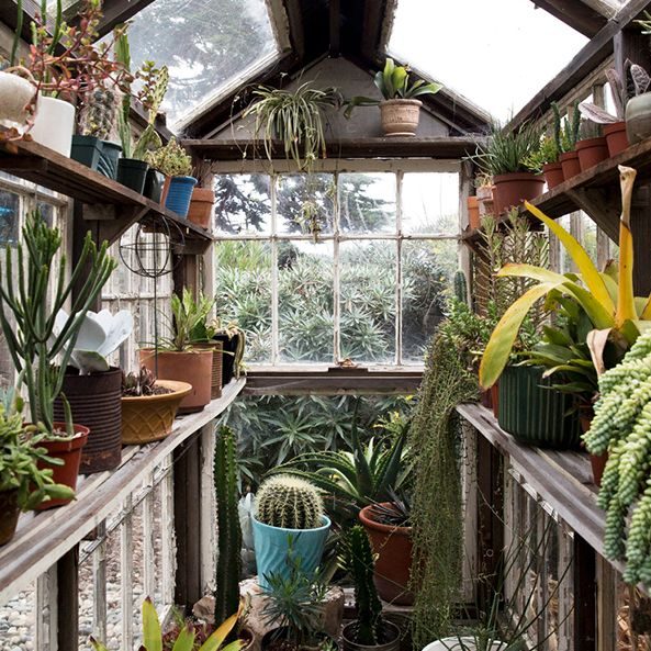 Green Home Design Ideas: 11 Greenhouse Design Ideas To Flex Your Green Thumb In Style