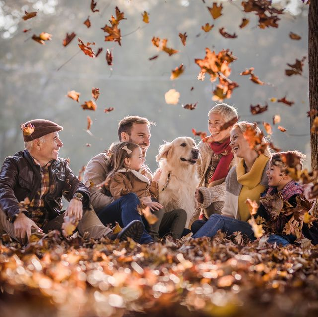 5525ce37c88 Fun Fall Activities for Families - Autumn Bucket List